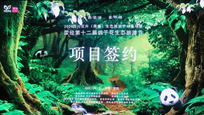 四川荥经举办第十二届鸽子花生态旅游节新闻发布会、招商引资推介会和品茗活动